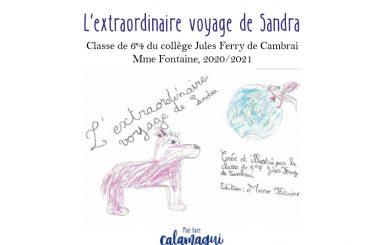 concours l extraordinaire voyage de sandra anne laure debruille