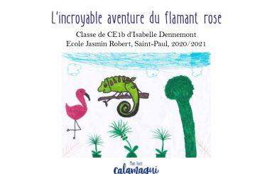 concours l incroyable aventure du flamant rose isabelle dennemont