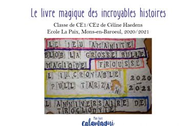 concours le livre magique des incroyables histoires celine haedens
