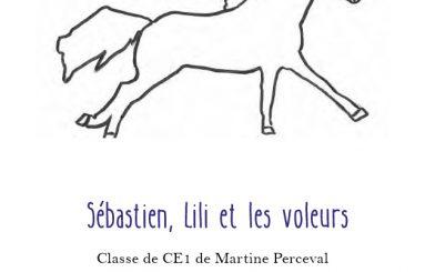 concours sebastien lili et les voleurs martine perceval