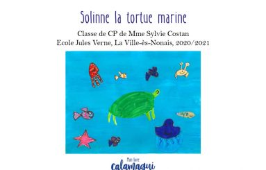 concours solinne la tortue marine mme costan